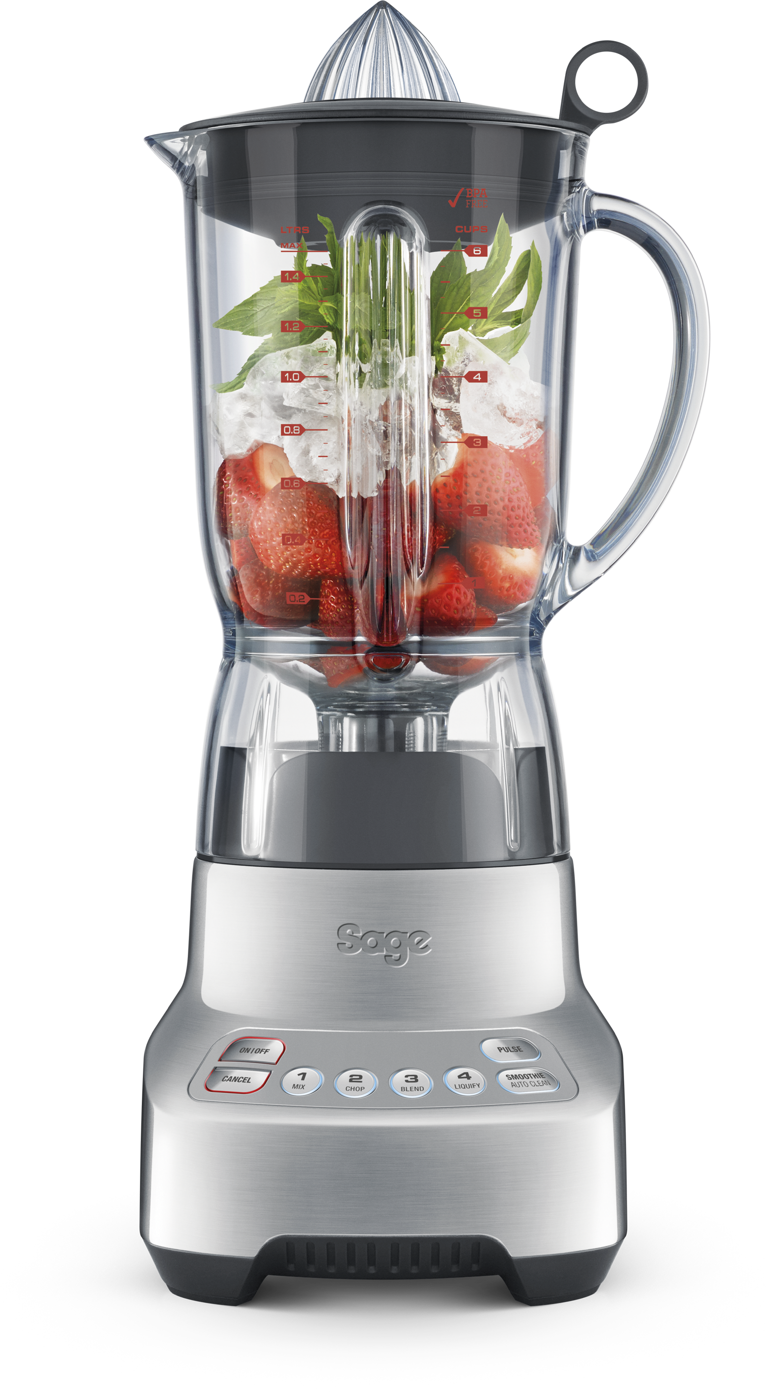Sage Blender The Kinetix Twist