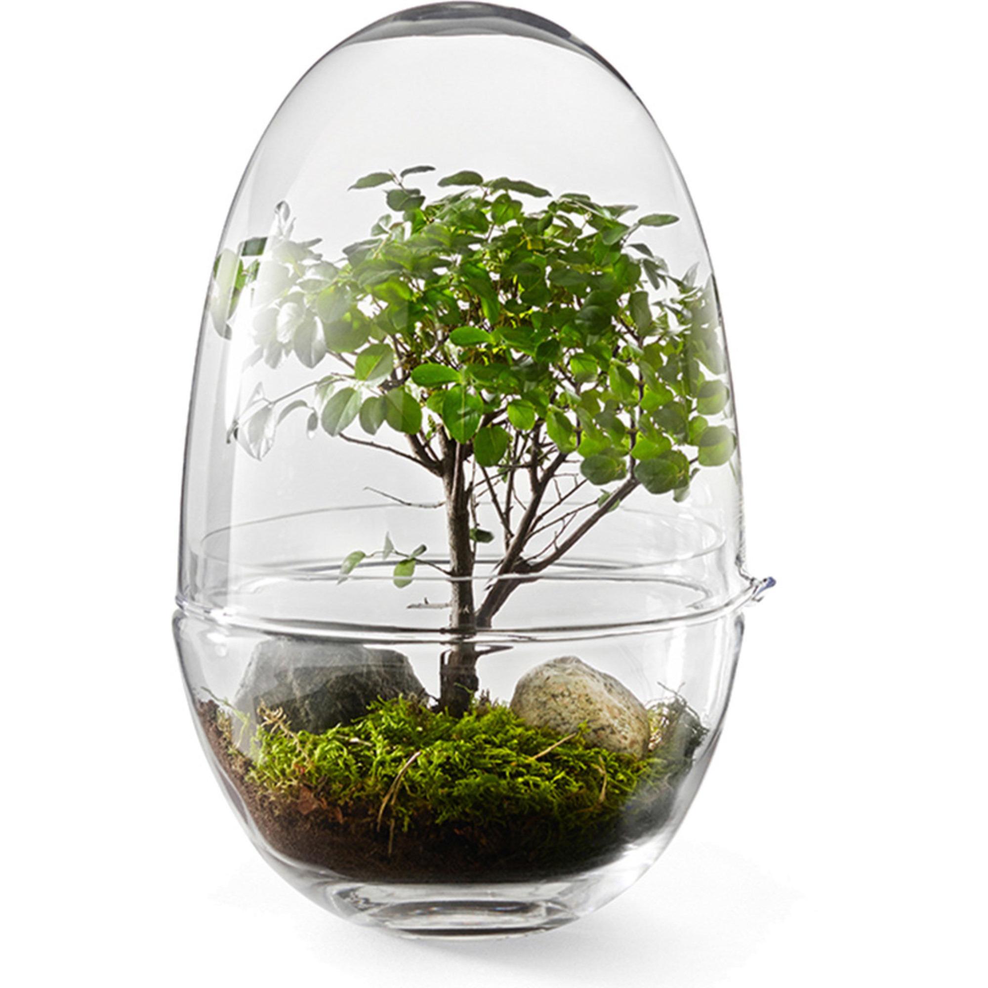 Design House Stockholm Grow Miniväxthus glas S Liten