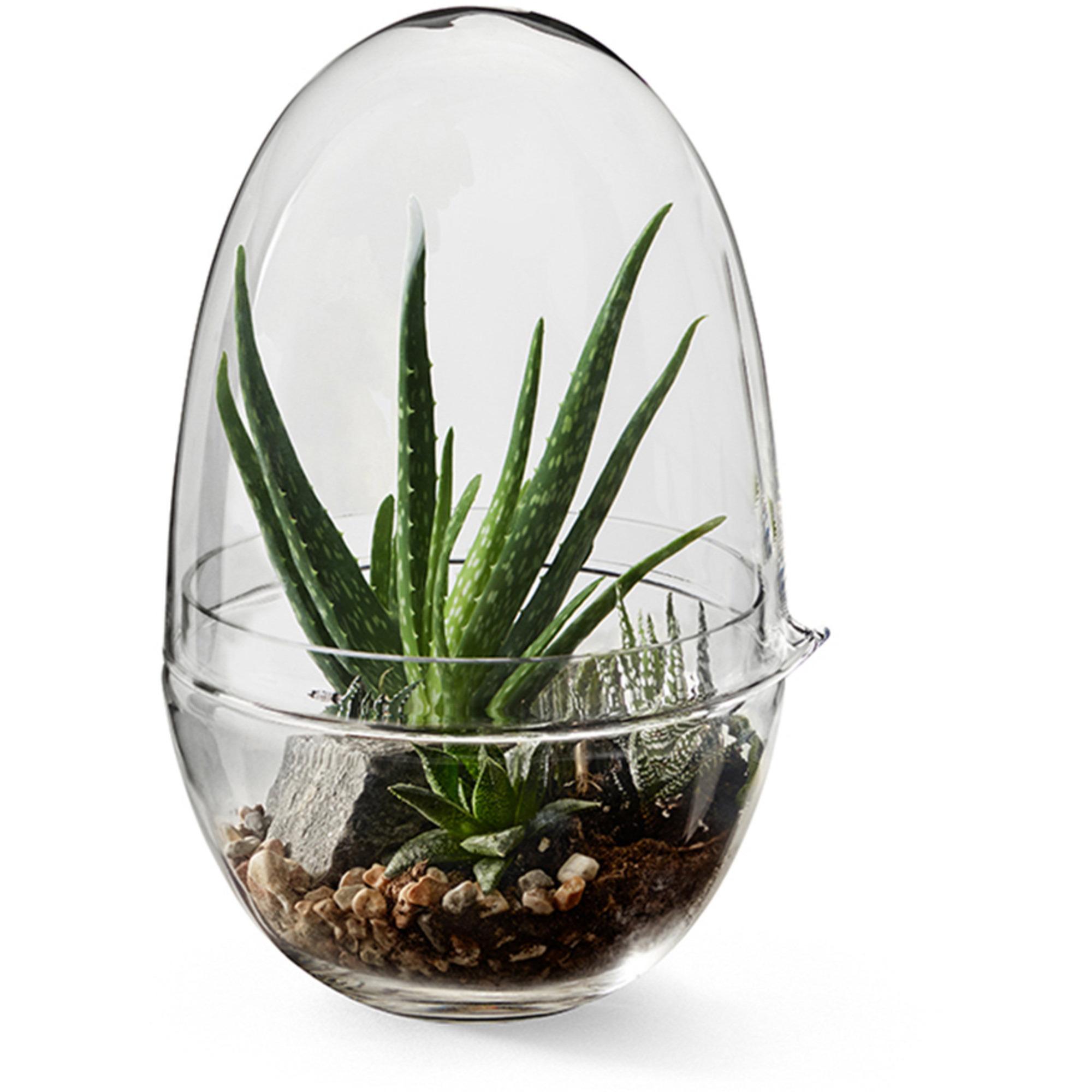 Design House Stockholm Grow Miniväxthus glas L Stor