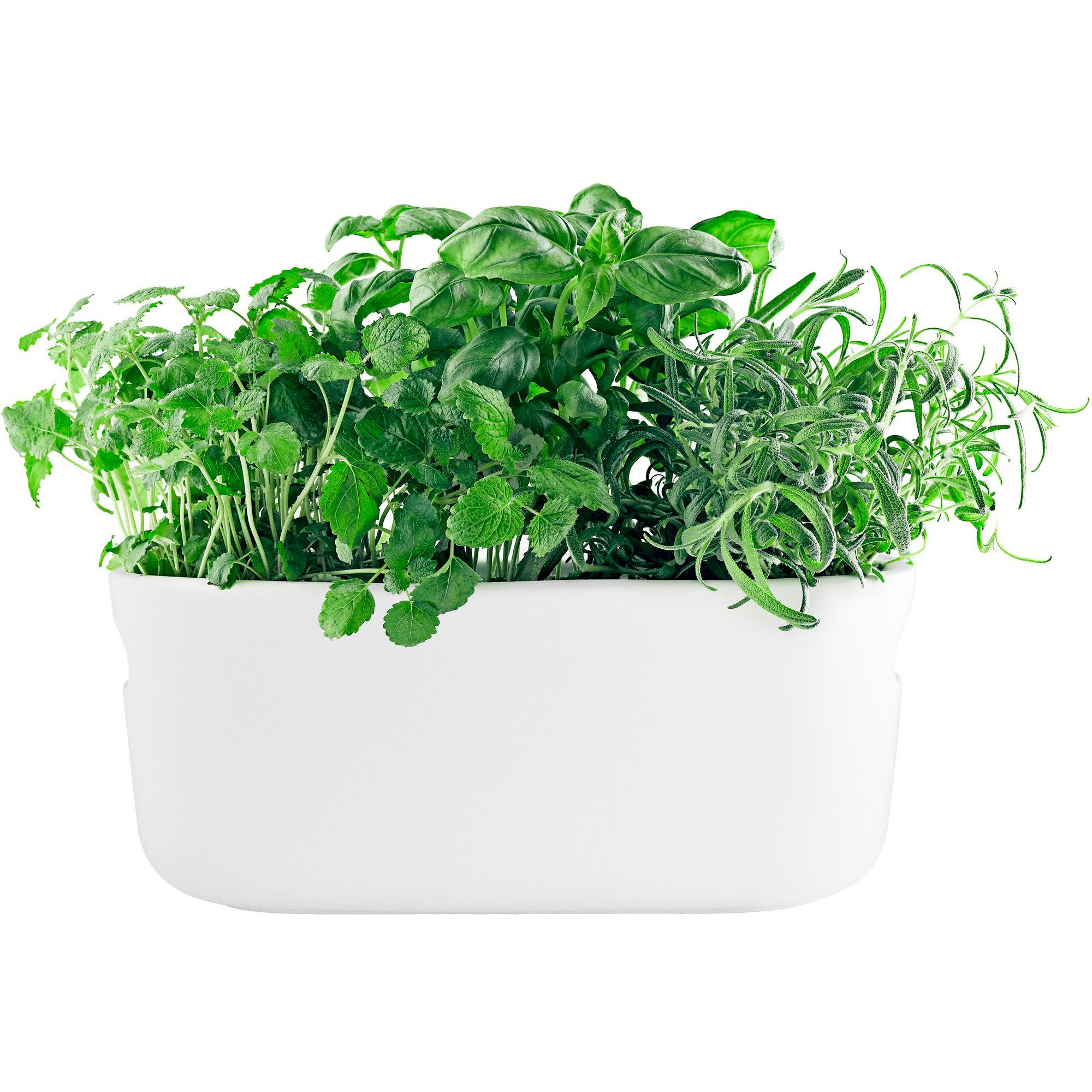 Eva Solo Självvattnande Herb Organiser Vit