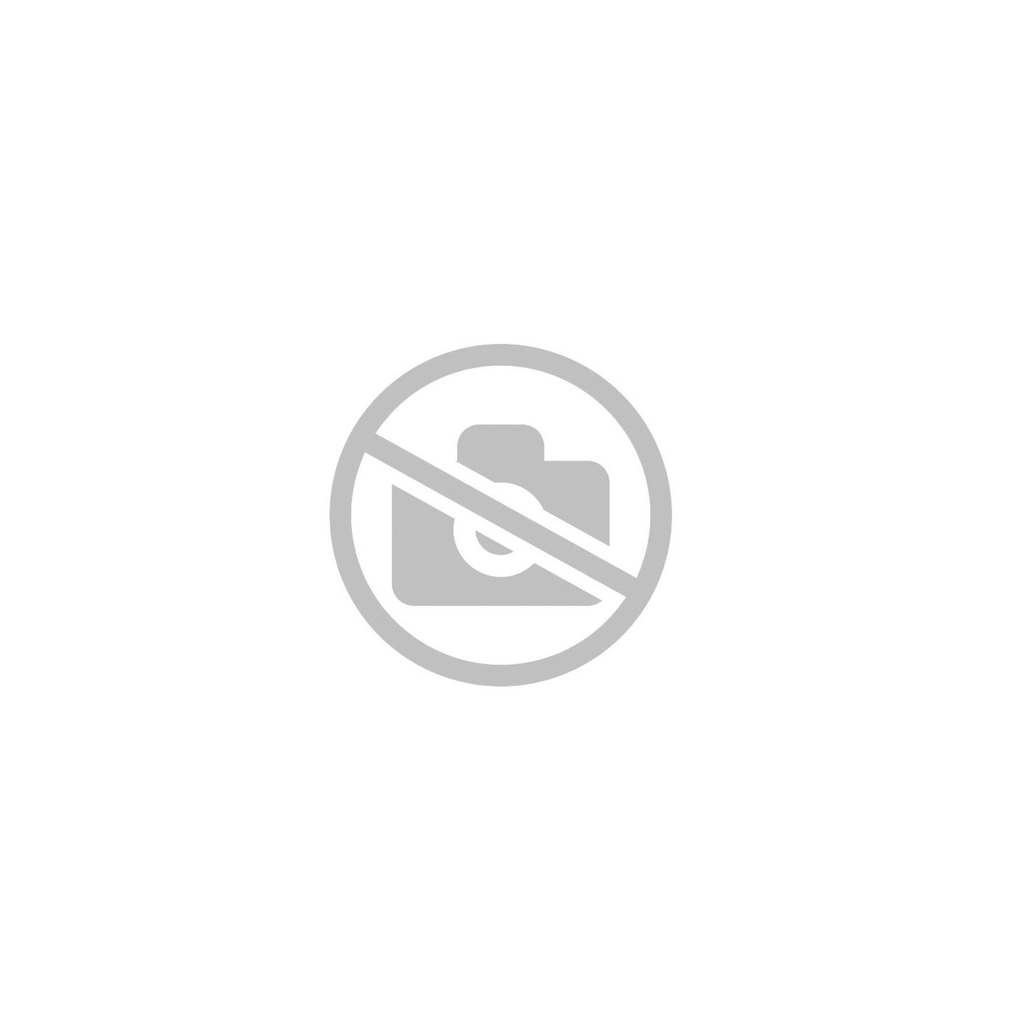 Landmann Ugas regulator med slang