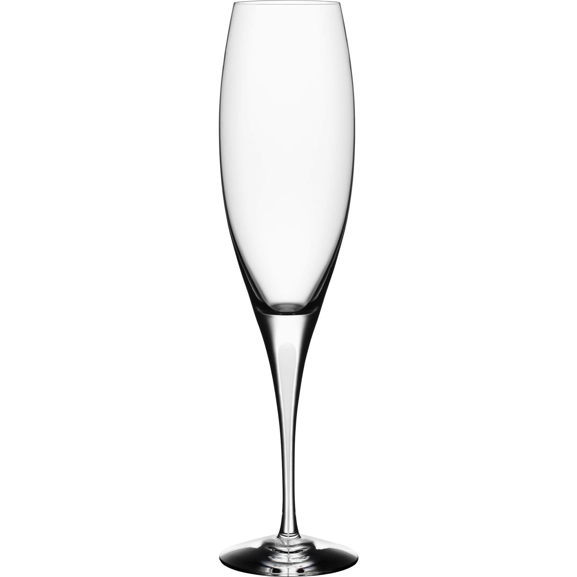 Orrefors Intermezzo Satin Champagne 25 cl