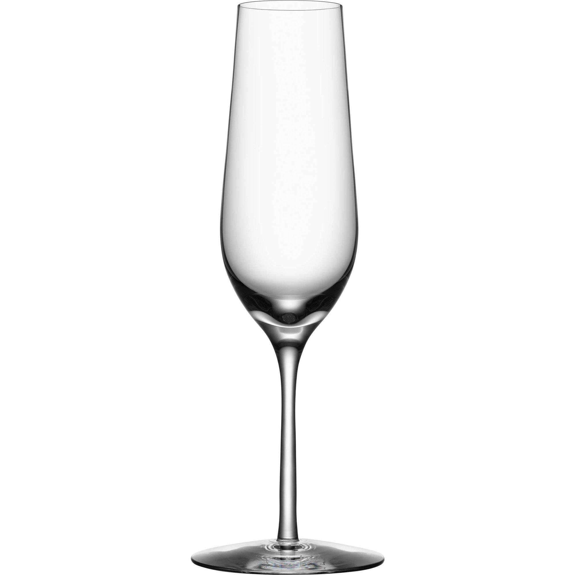 Orrefors Morberg Champagneglasa 24 cl 4-pack