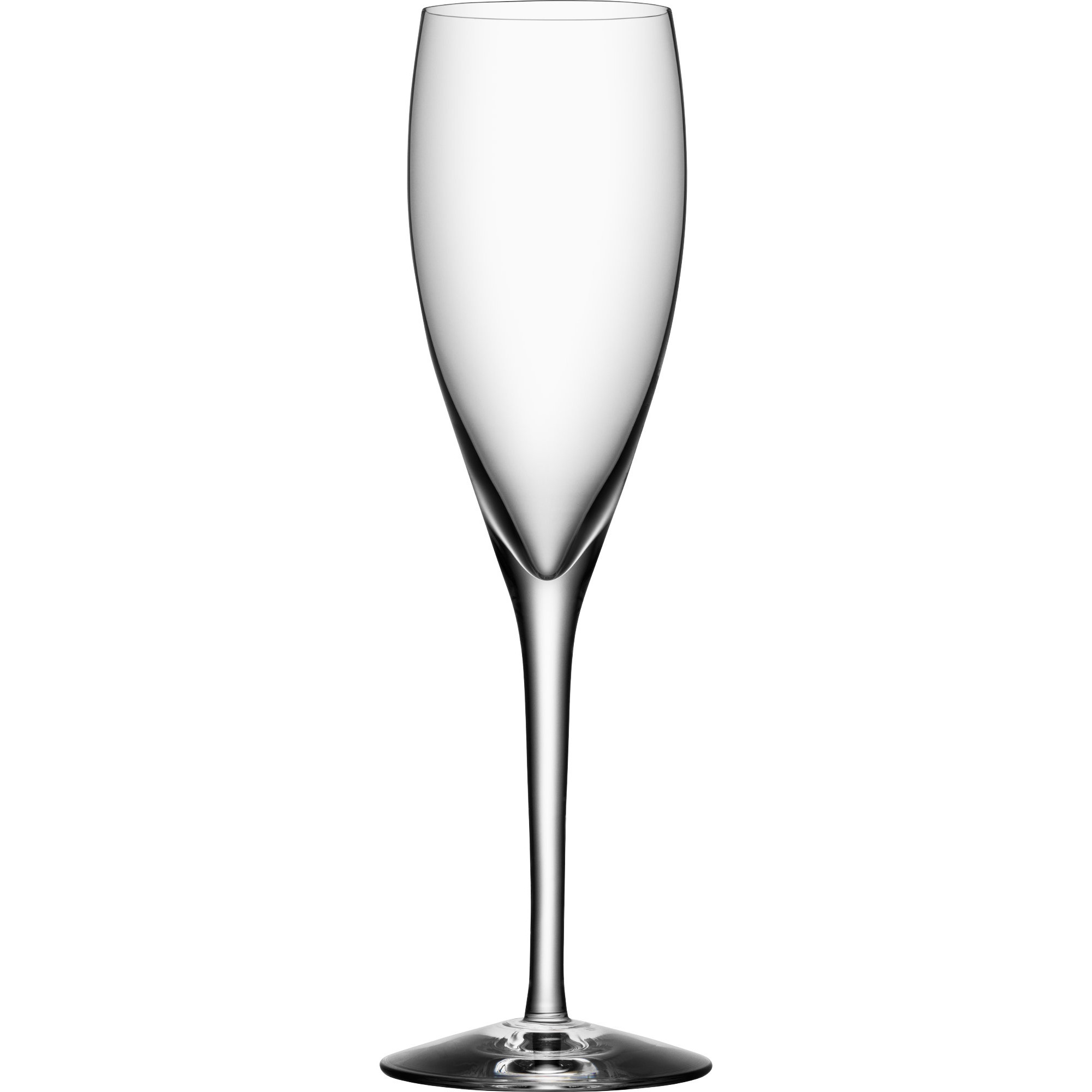 Orrefors More Champagneglas 18 cl 4-pack
