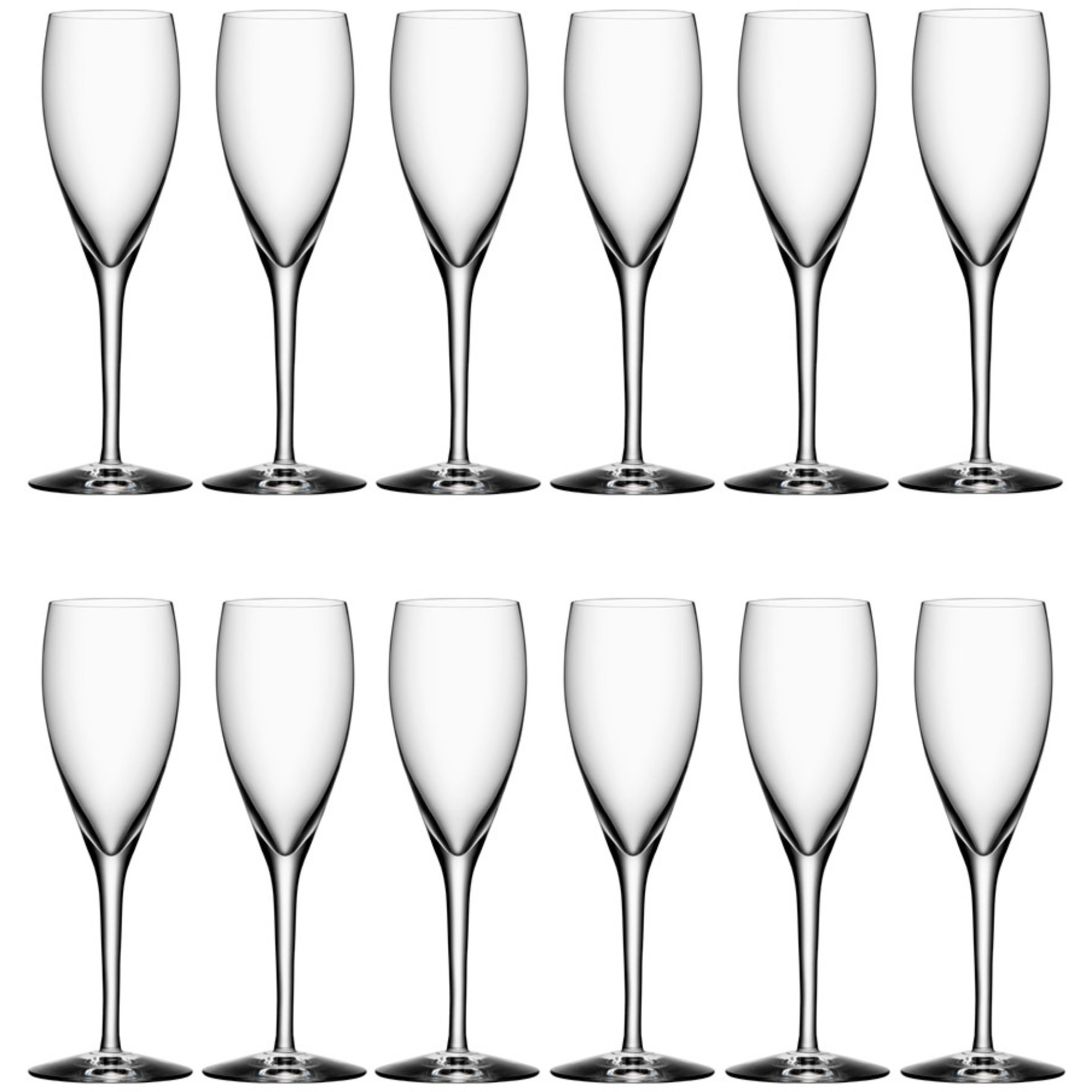 Orrefors More Champagneglas 18 cl 12 Pack