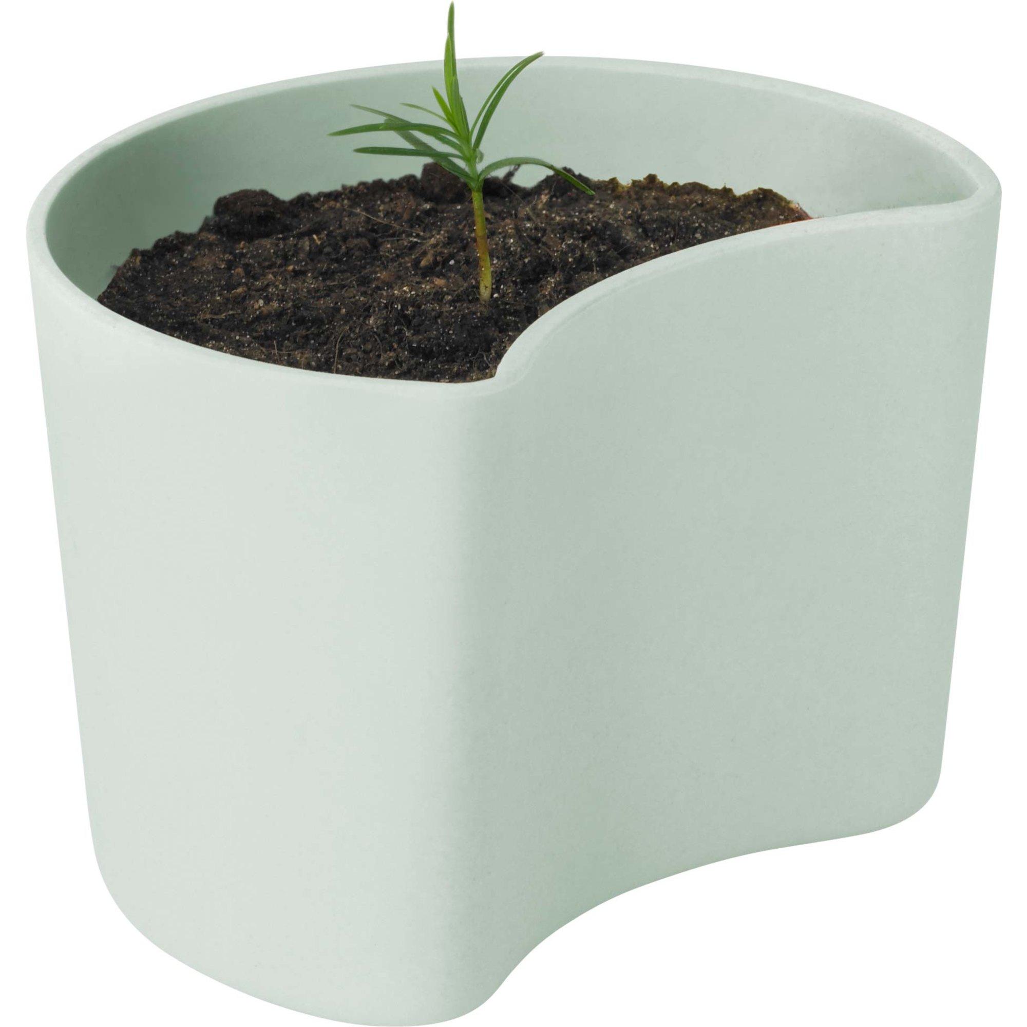 RIG-TIG Your Tree Kruka med frön Grön