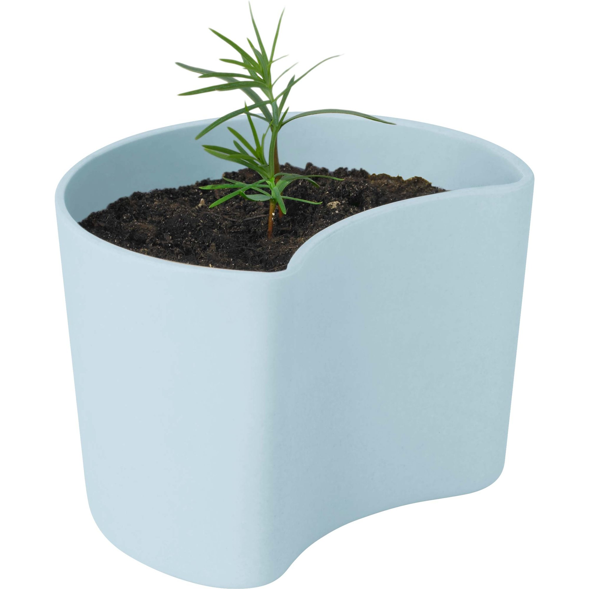 RIG-TIG Your Tree Kruka med frön Blå