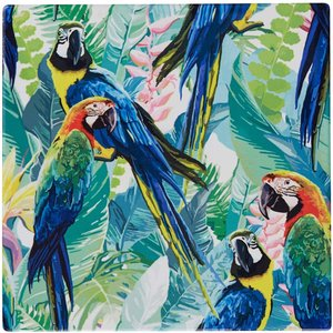 Glasunderlägg Kakel 15 X 15 cm Papegoja